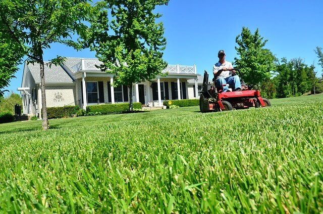 starting a lawn care business from scratch