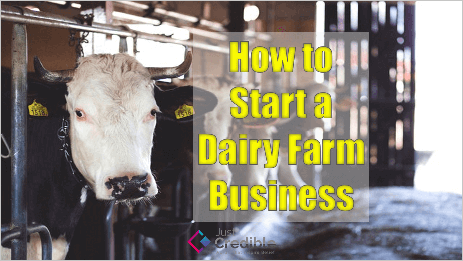 How to Start a Dairy Farm Business