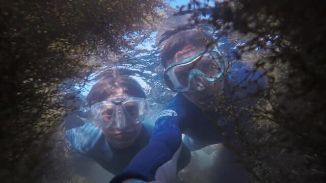 Buck Island, US Virgin Islands - most popular place for snorkeling