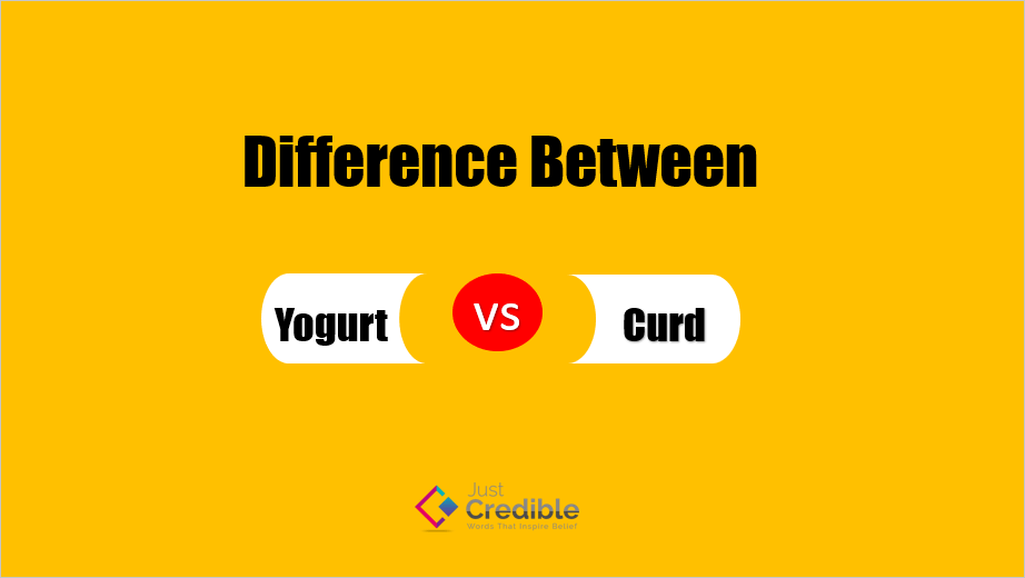 Difference Between Yogurt and Curd