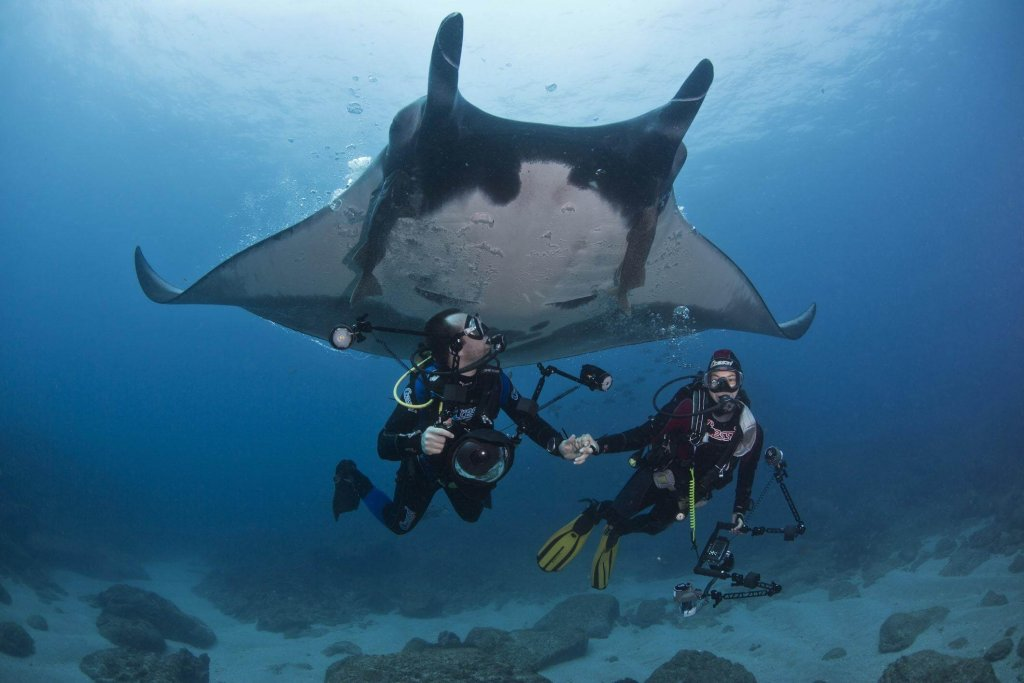 Komodo National Park, East Bali, Indonesia - best places to go snorkeling