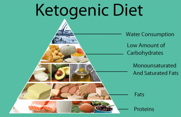Low Carb Diet vs Keto Diet