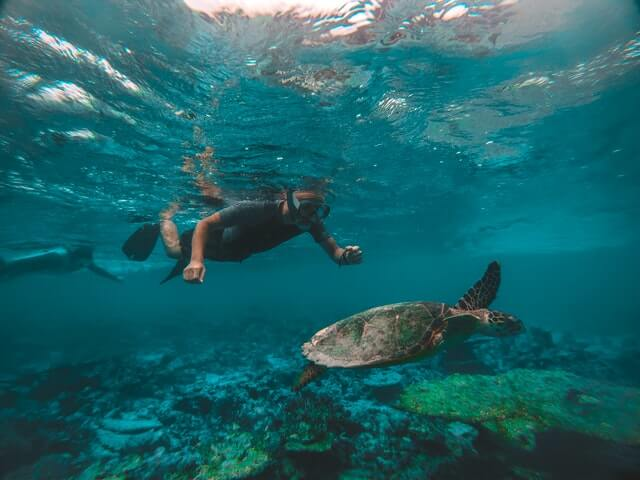 best places for snorkeling in the world