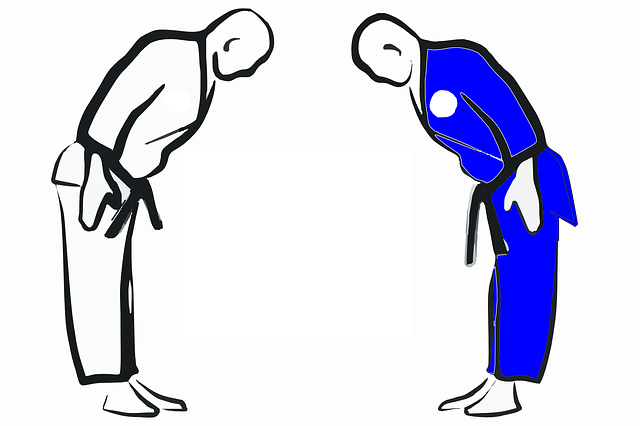 difference between taekwondo and karate