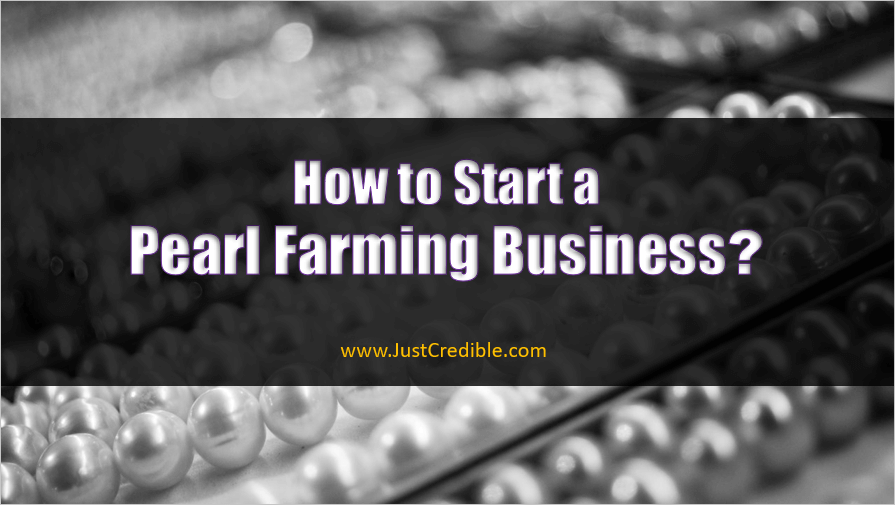 Pearl Farming Business
