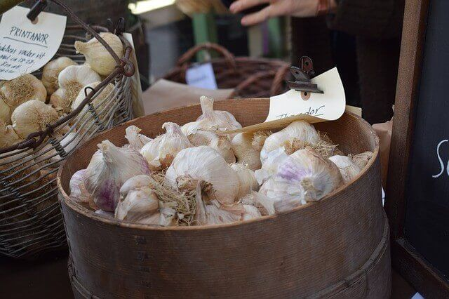 How to Sell Your Garlic Produce
