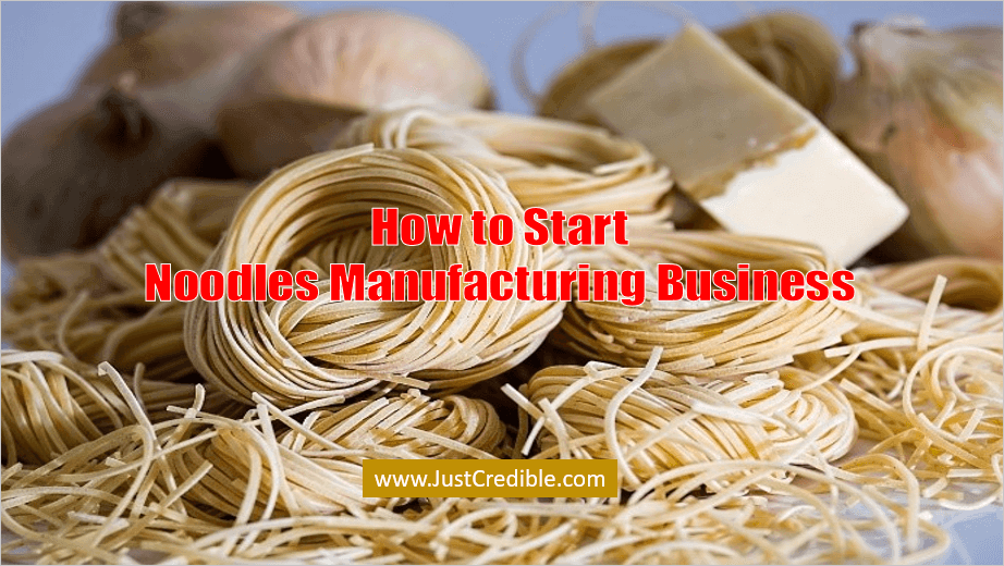 Noodles Manufacturing Business in India