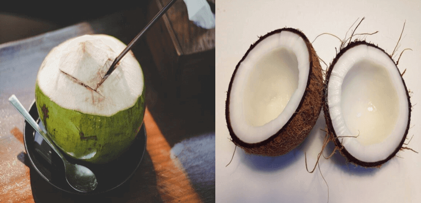 benefits of eating coconut meat
