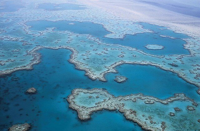 Great Barrier Reef - Wonders of the World