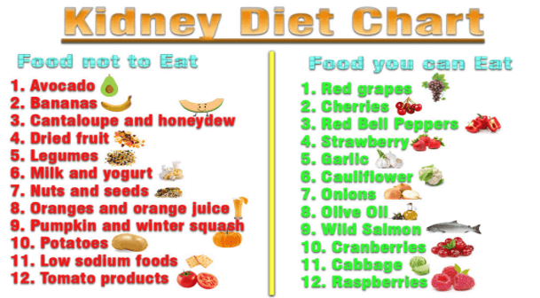 good foods for kidney health