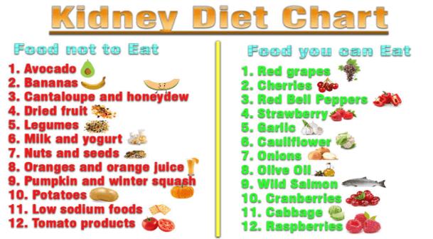 kidney kidneys healthy food foods health changes lifestyle keep eat shape avoid keeping diet drink