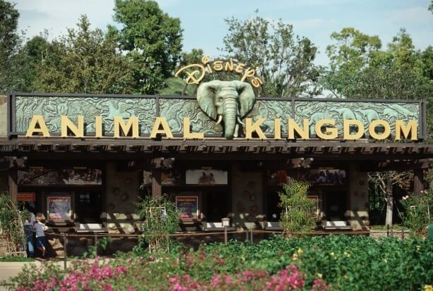 Disney Animal Kingdom Theme Park, Florida, USA