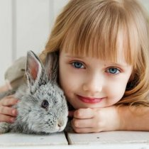 12 Top Pet Rabbit Breeds That Are Popular-Cute-Child Friendly (With Pictures): All You Need to Know