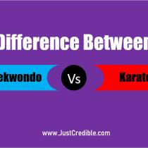 What is the Difference Between Taekwondo and Karate: Karate vs Taekwondo